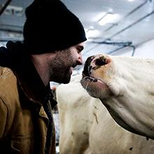A dairy farmer cares for his cow
