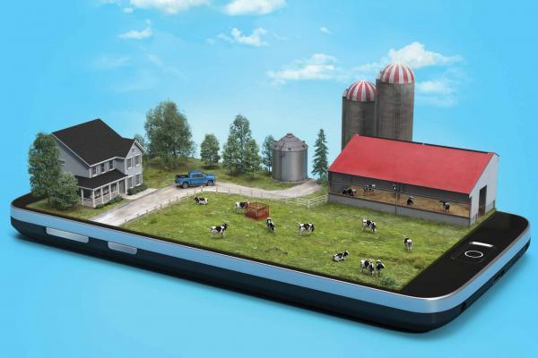 A complete farm with cows in a field and a red barn pops up in 3D from a smartphone