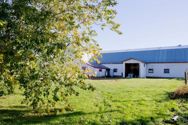 MacInnis Brothers Farm in Prince Edward Island