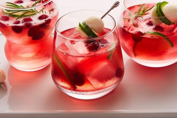 cranberry bocconcini gin tonic