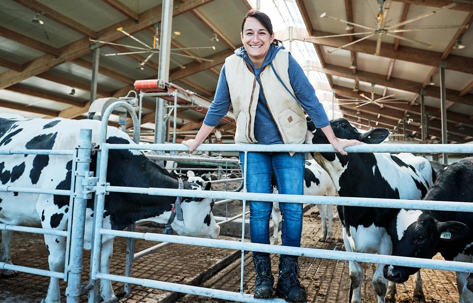 Ana-Maria with the cows