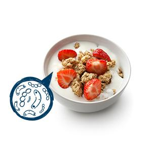 probiotic yogurt image